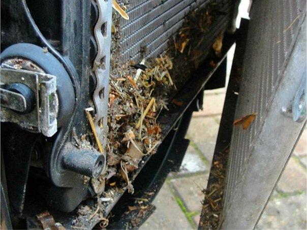 загрязнение снаружи радиатора